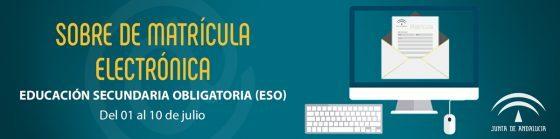 sobre_matricula_electronico_julio