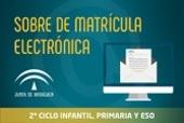 sobre_matricula_electronico_v2 logo