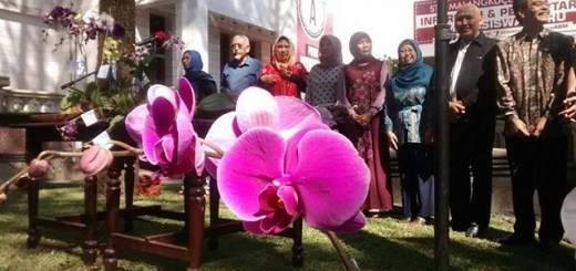 Persiapan Penanaman Anggrek bersama MABA 2015
