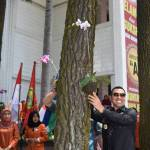 Indah: Wali Kota meletakkan anggrek di pohon pinus yang ada di kampus STIE Malangkucecwara, kemarin