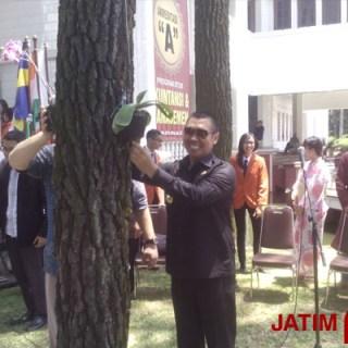 Wali Kota Malang H M. Anton secara simbolis menanam bunga anggrek di kampus STIE Malangkucewara.