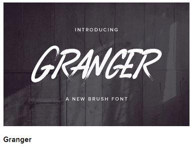 Download Premium, Free Fonts, Font Bundles - FontBundles.net