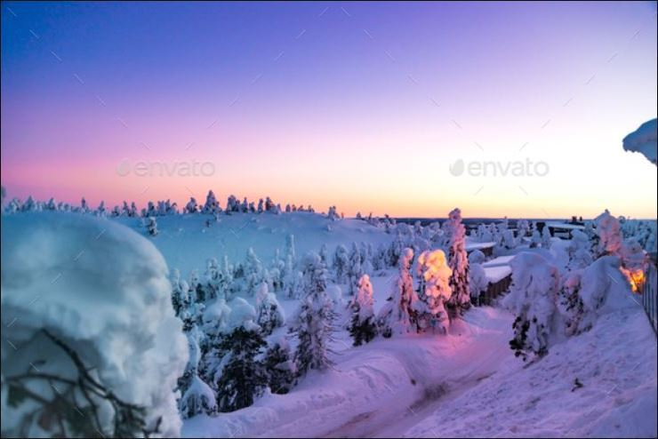 Fantastic Winter Sunrise In Mountains With Snow Covered Fir Trees Web3Canvas