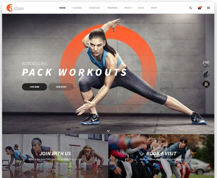 Aslan Template for Gyms, Fitness, Yoga and Personal Trainers Web3Canvas.