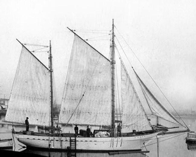 y8x10 Snark proportion adjusted sail plan