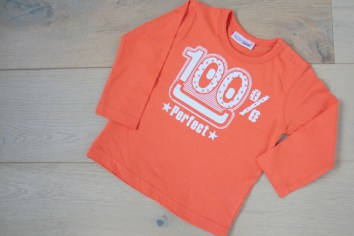 Hier kommt die Maus: das orangefarbene T-Shirt, bevor es zur Maus wurde. Foto: Julia Marre