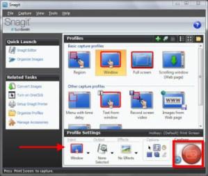 Capturas de pantalla en Windows con Snagit