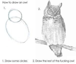 Como dibujar un Búho en dos pasos