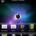 Temas blackberry Storm, Smart Berries