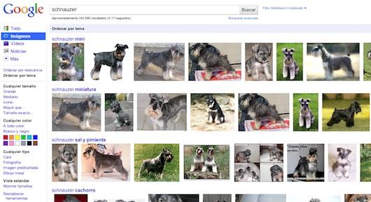 Google añade la clasificación por temas en los resultados de Google Images - Google-images-sort-by-subject