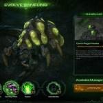 Startcraft 2: Heart of Swarm
