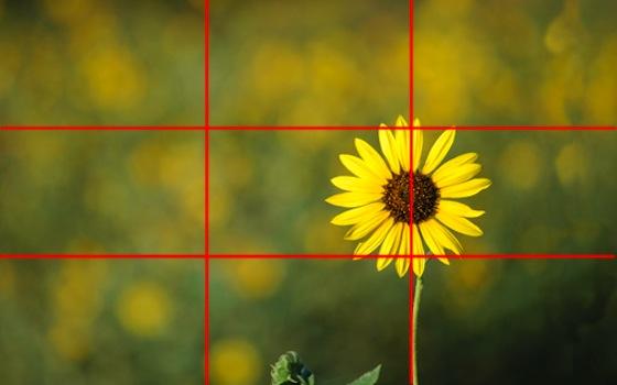 La regla de los Tercios, un tip para mejorar la composición fotográfica - regla-tercios
