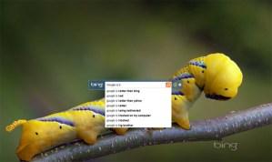 Bing ahora disponible desde el escritorio con Bing Desktop