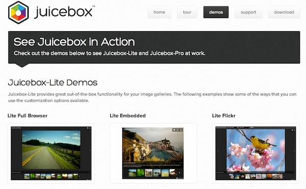 Juicebox crear galerias Crea elegantes galerías de imágenes para tu sitio con Juicebox