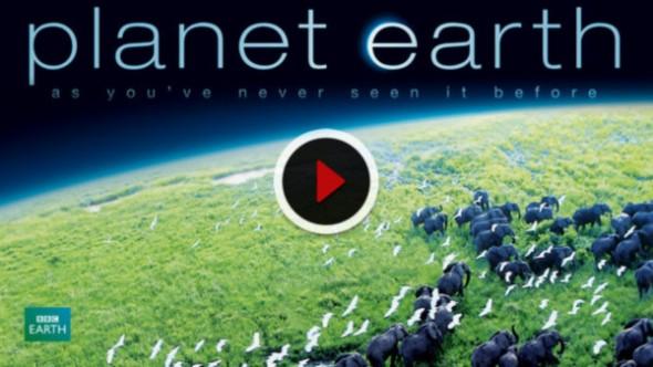 Planeta Tierra: nuestra recomendación Netflix para el fin de semana - planet-earth-bbc-590x332