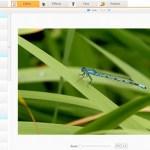 Editar fotos online en iPiccy - editar-fotos-gratis-web