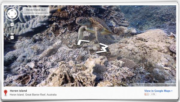 google street view oceans Google Street View ahora nos muestra arrecifes de coral en el fondo del mar