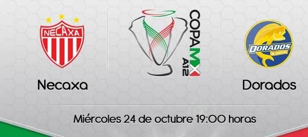 Necaxa vs Dorados en vivo, Copa MX 2012 - necaxa-dorados-en-vivo-copa-mx-2012
