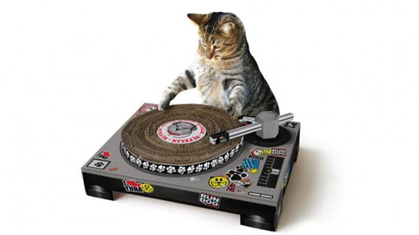 Inventos tecnológicos para tu gato - cat-dj