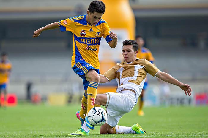 Pumas vs Tigres en vivo, Liga MX Clausura 2014 - tigres-vs-pumas-en-vivo-2014