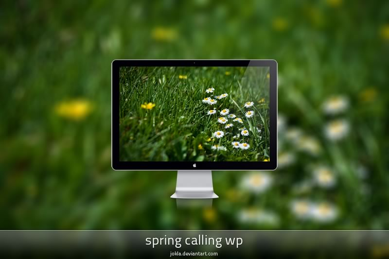 5 packs de fondos de Primavera para tu computadora, celular o tablet - fondos-primavera-spring-calling