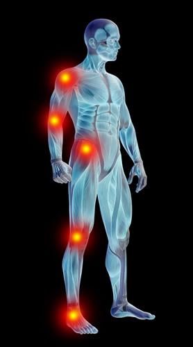 Científicos Mexicanos obtienen un método que permite recuperar movimiento tras parálisis - metodo-recuperacion-paralisis