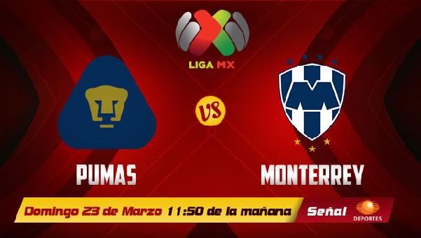 Pumas vs Monterrey en vivo, Jornada 12 Clausura 2014 - unam-vs-monterrey-en-vivo-2014