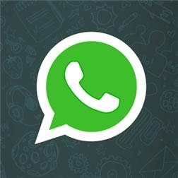 WhatsApp para Windows Phone ¡Ya se puede descargar! - whatsapp-windows-phone