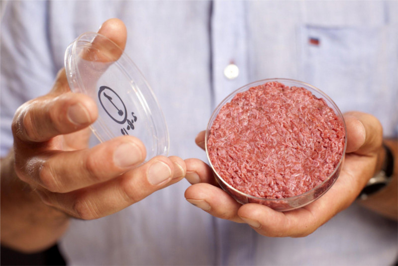 ¿Podría el cultivo de carne in vitro, volverse una opción alimenticia? - carne-in-vitro