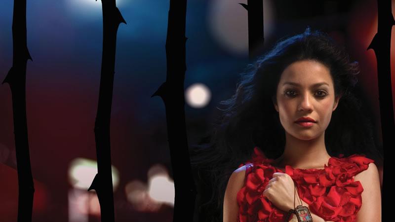 Lady, la vendedora de rosas se estrena en Netflix - Lady-la-vendedora-de-rosas
