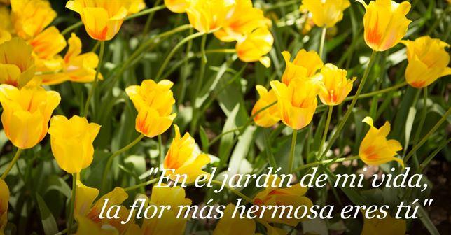 Frases del día de la madre para inspirarte este 10 de Mayo ¡Imperdibles! - Imagenes-con-Frases-del-dia-de-la-madre-2