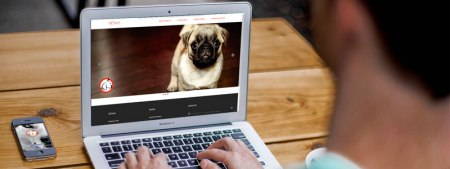 VETech: control canino al alcance de tu celular