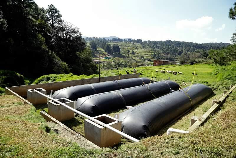 Crean biodigestor que abastece de energía a 3 mil granjas en México y América Latina - biodigestor-abastece-energia-a-granjas