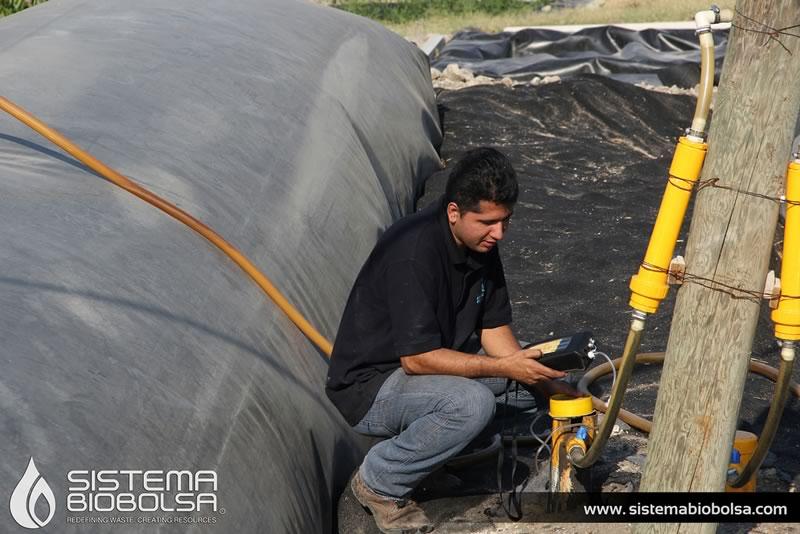 Crean biodigestor que abastece de energía a 3 mil granjas en México y América Latina - sistema-biobolsa