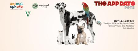 The App Date Pets este fin de semana, lleva a tu mascota