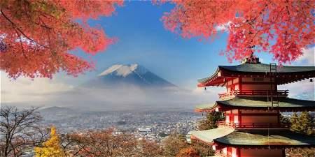 Estudia en Japón, Becas de Maestría en Sustentabilidad