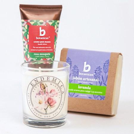 AZAP anuncia diseños florales y gift boxes ideales para el Día de las Madres - azap-botanicusendemica-diadelasmadres-2