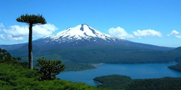 La Agencia de Cooperación Internacional de Chile (AGCI) Ofrece Becas a Mexicanos en Chile - chile