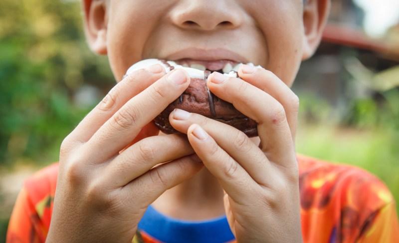 Encuentra respuesta científica al por qué los niños aún tienen ganas de seguir comiendo - respuesta-cientifica-al-por-que-los-nincc83os-aun-tienen-ganas-de-seguir-comiendo-800x487