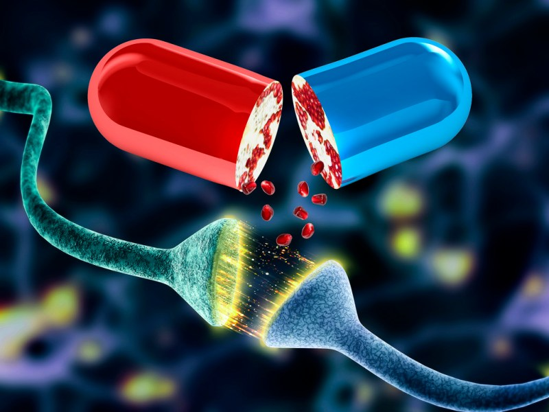 Mediante nanotecnología hacen llegar Omega 5 al cerebro - nanotecnologia-hacen-llegar-omega-5-al-cerebro-800x600