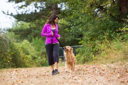 Pasear al perro ayuda a sus dueños a mantenerse saludables