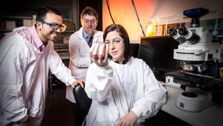 Mexicano en Australia logra cultivar neuronas en mini cerebro impreso en 3D