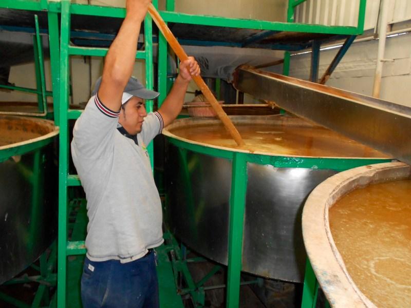 Inventan jóvenes científicos método para reutilizar agua de tortillerías - inventan-jovenes-cientificos-metodo-para-reutilizar-agua-de-tortillerias_3-800x600