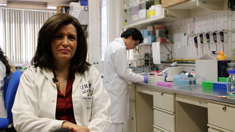 unam enfermedades renales Desarrollan en la UNAM dispositivo que detecta enfermedades renales