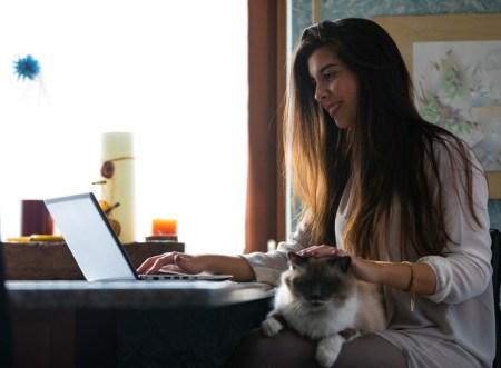 Hoy es el Día de Amar a tu Mascota, consiéntelos con la ayuda de internet