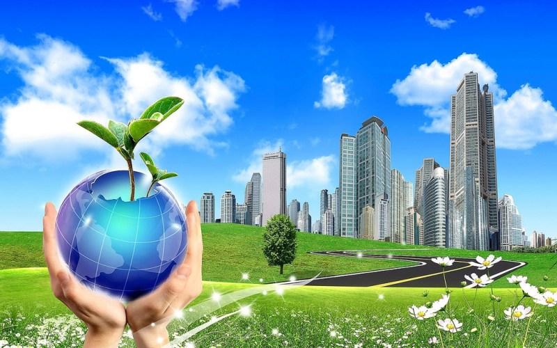 empresas verdes 800x500 Convocatoria para impulsar el fortalecimiento de empresas verdes con impacto ambiental
