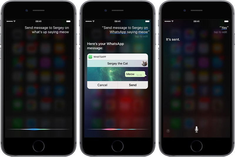 Siri ya puede leer tus mensajes de WhatsApp - whatsapp-2-16-for-ios-siri-integration-iphone-screenshot-001-800x534