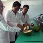 Estudiantes mexicanos crean tinta textil a base de cáscara de coco