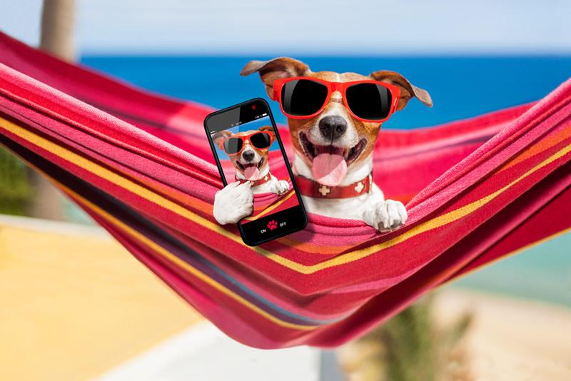 5 Apps para disfrutar el verano - apps-verano