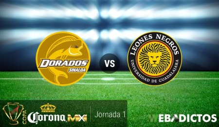 Dorados vs Leones Negros UDG, J1 Copa MX Apertura 2017   Resultado: 0-2